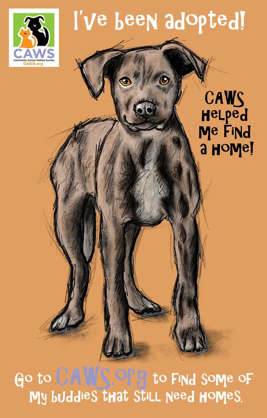 -Love-_Caws_Dog_3-2017-_Drawn_Dec_2017 TEXT