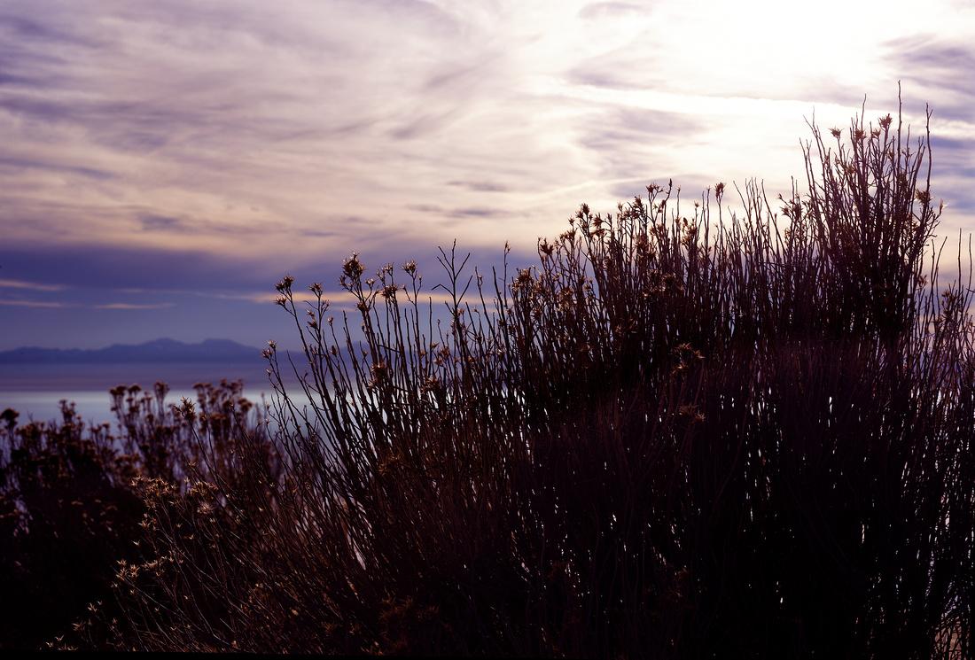 Antelope Island Nov 2017 (4)