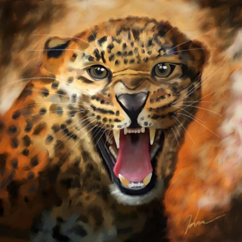 Leopard_4-2017_(C)_Karen_Squires