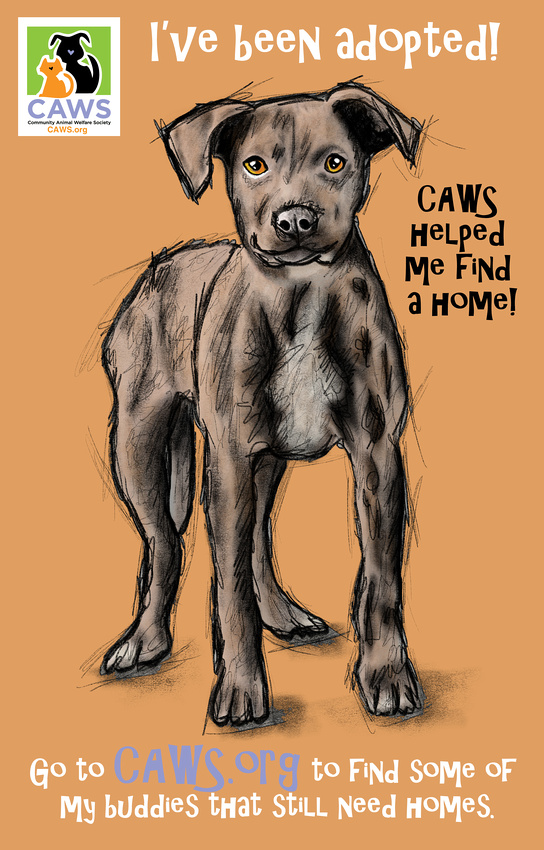 -Love-_Caws_Dog_3-2017-_Drawn_Dec_2017 TEXT